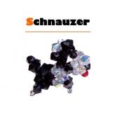 Kit Schnauzer di Swarovski (solo Materiale)